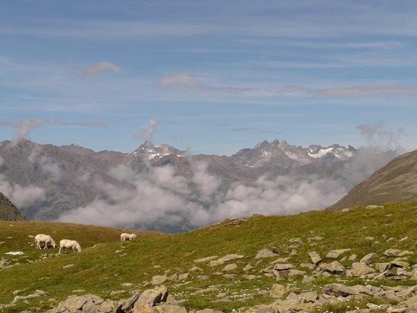 Klettersteigset Oberstdorf Leihen : E alpenüberquerung oberstdorf meran der klassiker unter den tran